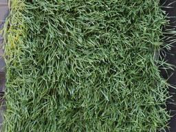 Искусственный газон и комплектующие