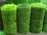 Искусственные газоны - фото 1