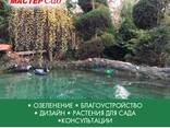 Ландшафтный дизайн, озеленение - photo 6