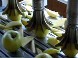 Машина для резки яблок на дольки. Яблокорезка. - фото 5