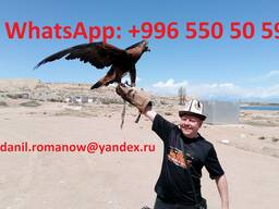 Travel in Kyrgyzstan, tourism, excursions, guide, hiking