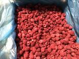 Закупаем малину замороженную разные сорта, оптом от 20 тон. - photo 1